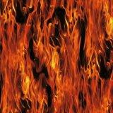Kingtop 0.5m Schedels van de Breedte en Film van het Ontwerp van de Vlam de Hydro Onderdompelende