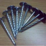 강철 Roofing Nails (중국제)