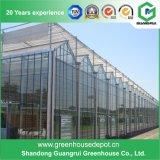 Serre chaude en verre de Venlo de qualité avec le système de refroidissement