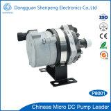 Cirulationを冷却する自動モーターのための24V DCポンプ