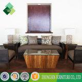 La mobilia esterna del giardino della mobilia 2017 imposta le Tabelle e le presidenze del rattan