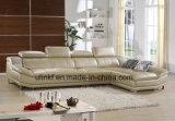الصين جلد أريكة, يعيش غرفة [فورنيتثر/] يعيش غرفة أريكة ([هإكس-فز041])