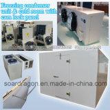 Unidad de congelación del condensador y cámara fría con el panel del bloqueo de la leva
