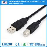 Дешевое цена Am к кабелю выдвижения USB2.0 Bm магнитному