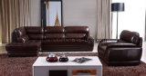 Sofà di legno domestico del cuoio del salone della mobilia (UL-NS052)