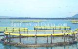 Cage nette de poissons du débarquement du poisson