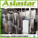 sistema do filtro da planta/água do tratamento da água do saquinho de 3000liter SS304