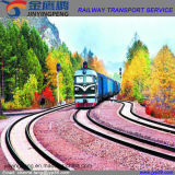 De Vrachtvervoerder van de spoorweg Van China aan Tajikistan