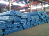 Câmaras de ar do aço inoxidável e tubulações sem emenda ASTM A312, A213, A269, A790, A789