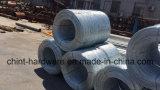 Eisen-Draht-Stahldraht-galvanisierter Eisen-Draht galvanisierter Stahldraht