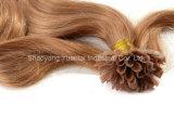 Ombre는 각질 편평 정점 사람의 모발 연장을 Virgin 머리로 만들어 착색한다