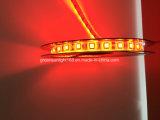 Tira de RGBW LED para la bicicleta