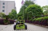 2017 cabritos verdes mini van más de Kart /Cocokart con la suspensión trasera