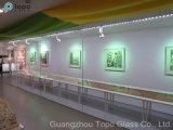 Clear View Low Iron Ar beschichtetes Antireflexmuseum Glas (AR-TP)