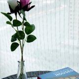 Tela escarpada sólida de lino de la cortina del algodón al por mayor de la alta calidad