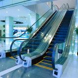 Passagier-im Freien sichere allgemeine Verkehrs-Rolltreppe