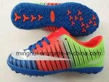 De goedkope het Verkopen van de Prijs Hete Schoenen van de Sporten van de Voetbal/van het Voetbal