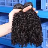 Gesundheit und Schönheit keine Verwicklung kein verschüttendes Jungfrau-verworrenes lockiges brasilianisches Haar