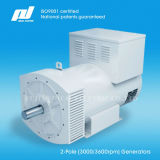 2-Pole 50 / 60Hz (3000 / 3600rpm) High Speed ​​Brushless Generatoren