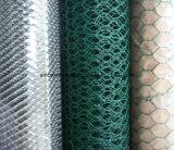 Hohes Qualtiy für das Großhandelsgast-sechseckige Ineinander greifen-/Gabion-Kasten-/Gabion Geflecht