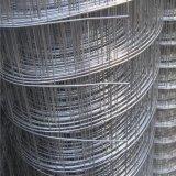 構築は溶接された金網を使用した