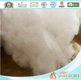 Pollice bianco poco costoso all'ingrosso dell'inserto 20X26 del cuscino di manovella del materiale di riempimento del poliestere della fabbrica