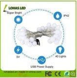 Zeichenkette-Licht 5m/16FT warmes Weiß USB-LED für Partei-Hochzeits-Dekoration