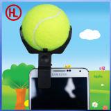 Le sfere dei giocattoli dell'animale domestico della sfera di tennis catturano gli strumenti delle foto per il cane