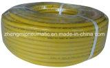 1/4 '' boyau en caoutchouc de noir de gaz de Lp (pression d'utilisation : 300p. s. I.)