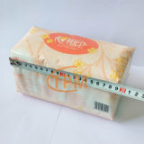 De automatische Nylon Zakken die van het Weefsel de Machine van de Verpakking van het Papieren zakdoekje verpakken