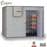 Caminhada do supermercado da alta qualidade no congelador da caixa do quarto de armazenamento do frio do chá verde para a venda