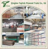 O folheado do vidoeiro do russo da fábrica de Linyi enfrentou a madeira compensada do núcleo do Poplar