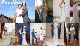 Платье венчания отделяемого кристаллический пояса шнурка оболочки 2017/колонки напольное