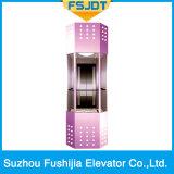 Ascenseur panoramique avec la glace parfaite de qualité visitant le pays avec la machine Roomless