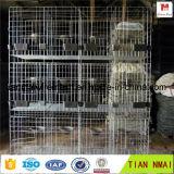 Cage de lapin de cage de /Bird de cage de perroquet pour la qualité d'exportation