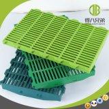 étage en plastique de porc de couleur verte de 600*600mm utilisé dans la caisse de cochonnée