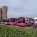 37-43seats 9m 버스 정면 엔진 관광 버스 차
