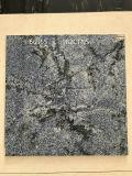 Tegel van het Porselein van het Bouwmateriaal de Verglaasde
