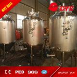 1000L de KegelGister van het Bier van het Ontwerp van het roestvrij staal