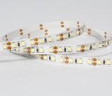 Striscia sottile economica di colore completo LED di vendita calda, strisce flessibili 3528 del LED con Ce RoHS