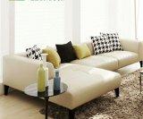 Einfaches und modernes ledernes Wohnzimmer-Sofa