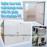 Quarto de armazenamento do frio do fechamento de porta da segurança com incêndio da classe B1 - plutônio do retardador