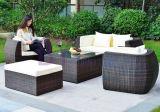 Meubles extérieurs de loisirs de patio de rotin de PE personnalisés par vente en gros