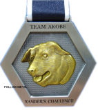 Médaille de l'enjeu de la tempête pour l'équipe Akobe avec le logo de crabot