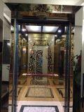 Elevador residencial Gearless do passageiro do elevador do UPS de Vvvf