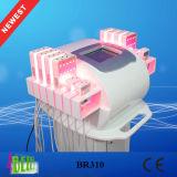 Máquina portable del laser de Zerona Lipo para el retiro de las celulitis con 336 luces del diodo del PCS