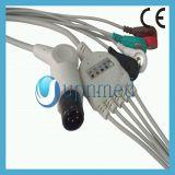 Cable de Datascope ECG con los Leadwires