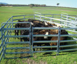 Qualität Used Yards Panels für Cattle/Sheep/Horse