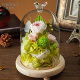 Flor verdadera natural de la manera el 100% Rose para la decoración del regalo de la tarjeta del día de San Valentín