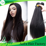 Peruca frouxa do cabelo humano do Virgin do fornecedor do cabelo da onda da forma